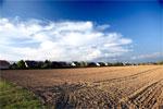 Podatki Lokalne - Opodatkowanie użytków rolnych - podatek od nieruchomości, użytki rolne