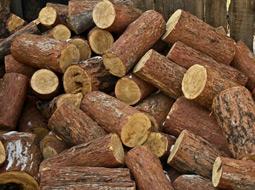 Klasyfikacja paragrafowa dochodów powiatu ze sprzedaży drewna opałowego, pochodzącego z wycinki drzew
