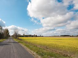 Posiadanie samoistne i zależne gruntów rolnych a podatek od nieruchomości