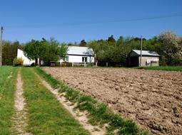 Podział nieruchomości obciążonej i zmiana służebności gruntowej