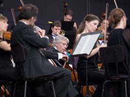 Zakup instrumentów muzycznych dla orkiestry prowadzonej przez instytucję kultury