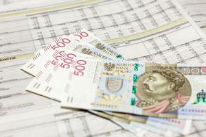 Prezentacjaw bilansie środków pieniężnych podopiecznych, przechowywanych na rachunku bankowym DPS